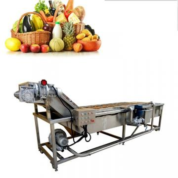 Stainless Steel Food Fruit Washer Potato Tomato Air Bubble Washing Machine Vegetable Cleaner