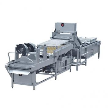 Brush potato washing machine high efficiency commercial food washer carrot washer